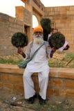 Индийское saleman Стоковые Изображения