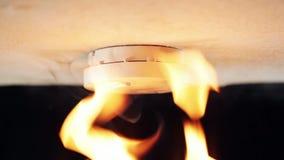 Индикатор дыма на потолке видеоматериал