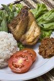 индонеец зажаренный цыпленком стоковая фотография