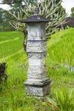 Индусская святыня помещенная в поле рисовых полей bali Индонесия стоковое изображение