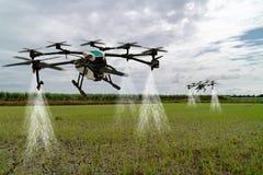Индустрия 4 земледелия Iot умная 0 концепций, трутень в пользе фермы точности для брызга вода, удобрение или химикат к полю, стоковые фотографии rf