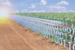 Индустрия 4 Iot умная 0 цифровых преобразований с искусственным интеллектом или ai в концепции земледелия стоковые фото
