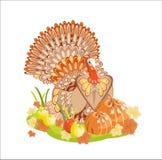 индюк благодарения хлебоуборки Стоковое фото RF