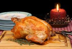 индюк жаркого цыпленка Стоковая Фотография RF