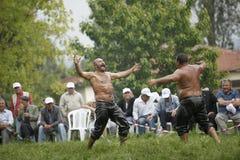 индюк масла wrestling Стоковые Фотографии RF