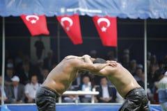 индюк масла wrestling стоковые фото