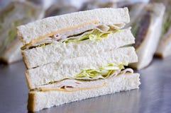 индюк сандвича Стоковое Изображение RF
