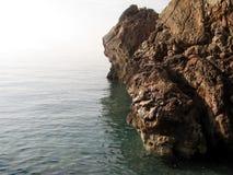 индюк свободного полета среднеземноморской Стоковые Изображения