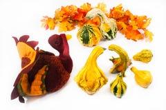 индюк gourds Стоковая Фотография RF