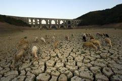 индюк maglova засухи мост-водовода Стоковая Фотография RF