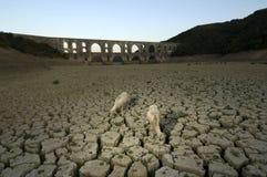 индюк maglova засухи мост-водовода Стоковое Изображение RF