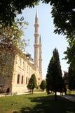 индюк selimiye мечети Стоковые Фото