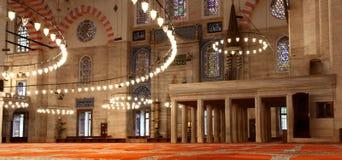 индюк suleymaniye мечети istanbul Стоковое Изображение