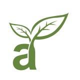 Инициал вектора зеленый логотип Стоковые Фотографии RF