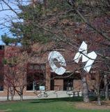 Инициалы OM в дереве Стоковая Фотография