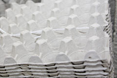 линия продукция яичек стоковые фотографии rf
