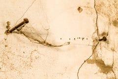 2 длинных ногтя управляемого в треснутую стену Стоковая Фотография RF