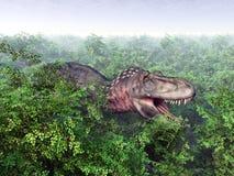 динозавр клиппирования 3d над белизной tarbosaurus тени перевода путя Стоковое Изображение RF