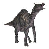 динозавр Saurolophus перевода 3D на белизне Стоковое Фото