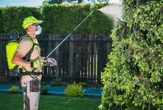 Инсектицид сада путем распылять стоковые фотографии rf