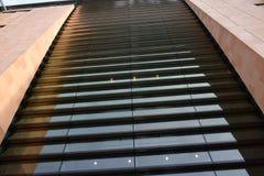 11/03/2018 института растяжения мышц Фрэнсиса в Лондоне Красивое archicteture здания Стоковое фото RF