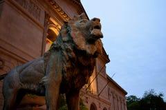 Институт искусства льва Чикаго стоковые изображения