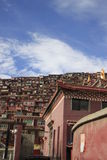 Институт тибетского буддизма в Китае стоковые изображения rf