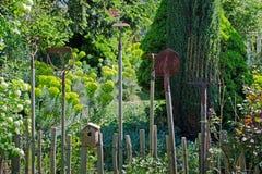 инструменты весеннего времени сада садовничая Стоковое фото RF
