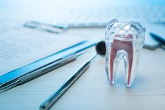 Инструменты дантиста, модель зуба на таблице дантиста с клавиатурой компьютера и зонд тетради зубоврачебные, зеркало и исследоват стоковая фотография rf