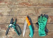инструменты сада Стоковые Фотографии RF