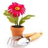 инструменты садовничая завода искусственного цветка Стоковое Изображение RF