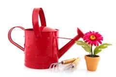 инструменты садовничая завода искусственного цветка Стоковая Фотография
