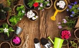 инструменты цветков садовничая стоковые изображения rf
