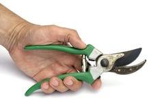 инструменты secateurs Стоковое фото RF