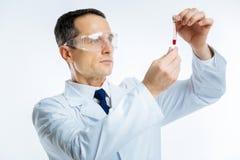 Интеллектуальный доктор смотря пробирку с пробой крови Стоковые Изображения RF