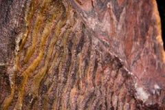 Интересная, необыкновенная и красивая текстура утеса Стоковое Фото