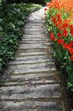 Интересная тропа сада Стоковое фото RF