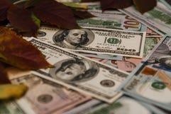 Интересные размещение и обзор долларов искать стоковые изображения rf