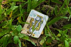 Интересный взгляд грязной, старой и сброшенной игральной карты, короля сердец, найденного в траве в парке сада стоковые фотографии rf