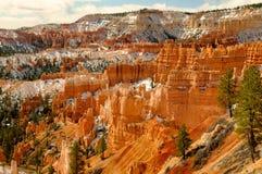 интерес каньона bryce стоковое фото