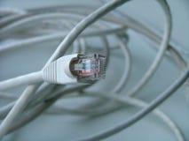 интернет кабельного соединения Стоковые Изображения RF