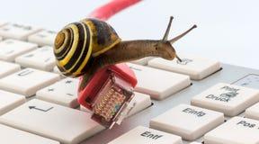 интернет медленный Стоковая Фотография RF