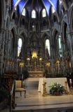 Интерьер базилики собора Нотр-Дам строя от городской Оттавы в Канаде Стоковые Фотографии RF