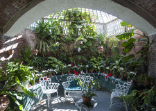 Интерьер ботанического сада стоковая фотография