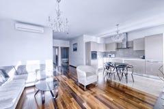 Интерьер кухн-живя комнаты в современном доме Стоковое фото RF