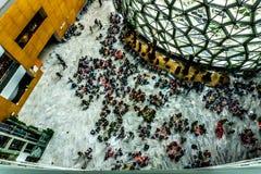 Интерьер 3 музея естественной истории Шанхая стоковое фото rf