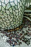 Интерьер музея естественной истории Шанхая стоковые фотографии rf