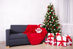 Интерьер рождества - украшенные рождественская елка и подарочные коробки в l Стоковые Фотографии RF