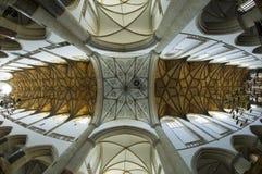 интерьер рыб глаза церков Стоковое Фото
