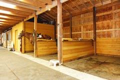 Интерьер сарая с конюшнями лошади. Стоковые Изображения RF